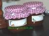 Nektarinen-Honigmelonen Konfitüre