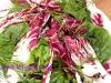 Spinat-Radicchio Salat