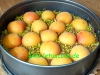 Schokokuchen mit Aprikosen