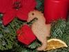Weihnachts Seepferdchen